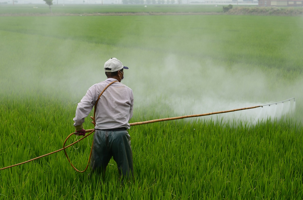 About agricultural pollution by pesticides