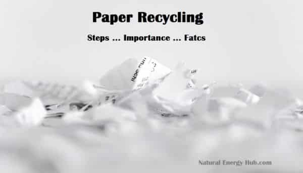 Paper Recycling process steps, advantages & facts
